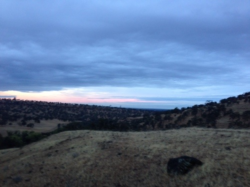Watching dawn break over the hills above Chico was stunning. And cold.